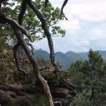 3-Burgen-Blick im Pfälzer Wald