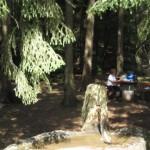 Rothsteigbrunnen auf dem Dahner Felsenpfad