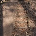Schluchtenpfad bei Rissenthal; Treppe gegen Pfädchen
