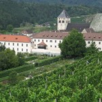 kloster neustift weinberg
