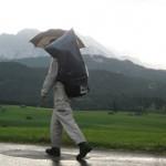 Regenläufer auf dem Goetheweg
