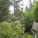 grenzschild Bayern Vorarlberg am Maximiliansweg