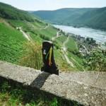 Wein, Rhein, Gitarre vor Lorch