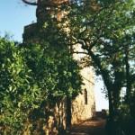 Burg Ehrenfels bei Assmannshausen liegt am Rheinsteig
