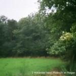 f-rh-014-2-hollaender