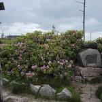 Bussemer Gedenkstein