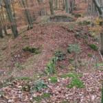 die versunkene Altenburg auf dem Potzberg