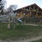auf dem großen Potzberg ist die Blockhütte von der Greifvogelschau