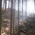 Felsen im Karlstal