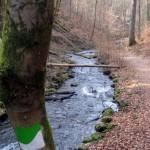 Karlstalschlucht mit Bachlauf