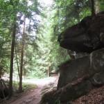 das Tal des Mühlbach beim Clausensee