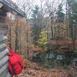 Schutzhütte bei der Heidelburg bei Waldfischbach