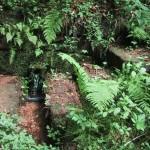 der Mühlbrunnen beim Clausensee