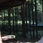 beim Saufelsen ist eine Schutzhütte