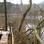 bei Erlenbach-Pfalz liegt der schöne Badesee