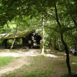 Hütte Kronbuche bei Falkenstein