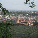 Blick auf Neustadt aus Neustadt-Haardt