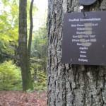 s-kh-friedwald-gemeinschaftsbaum