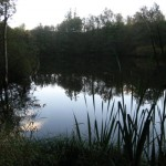 s-kh-rosenweiher