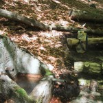 s-ki-Rehbrunnen