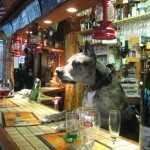 f-at-6556-fismes-dogge